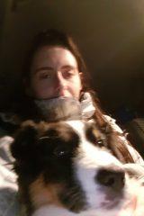 Coming home owczarek australijski szczeniak hodowla all embracing