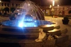 Chita fontanna 2