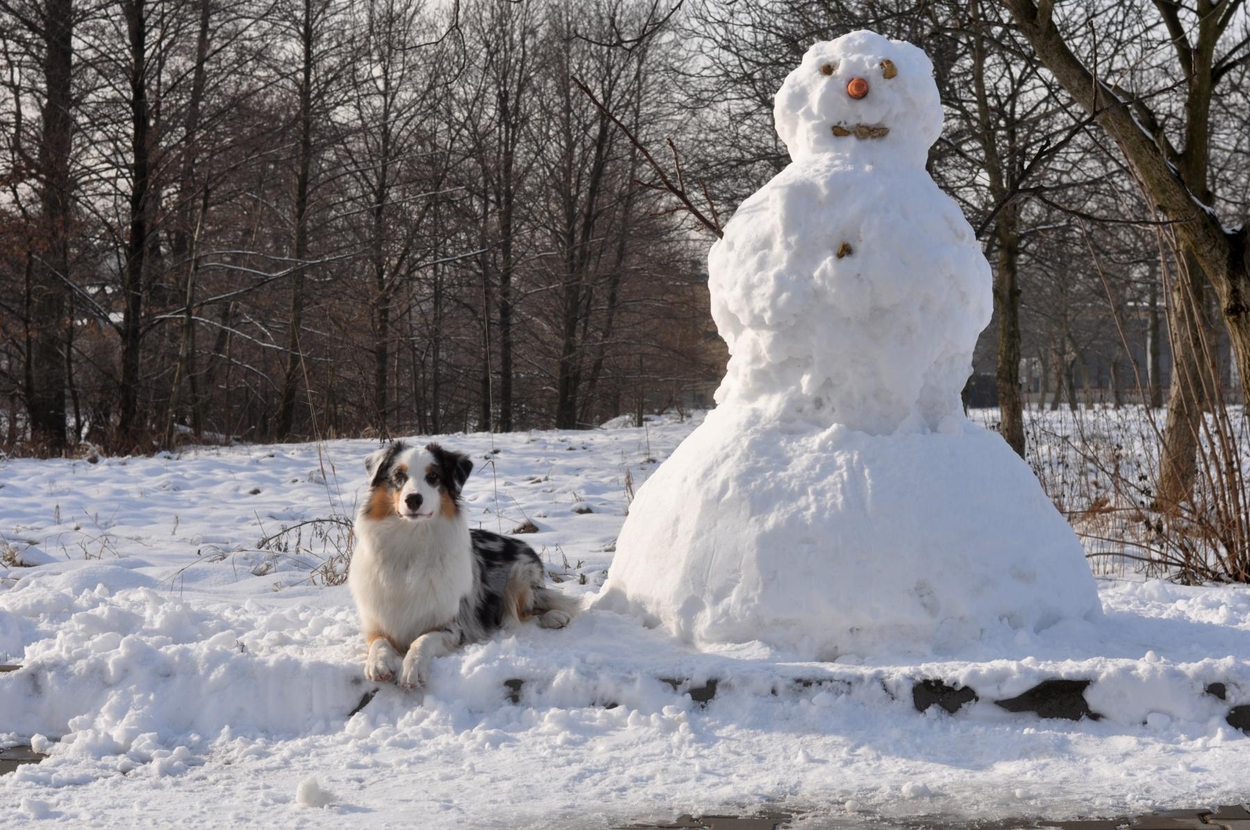 Chita snowman l